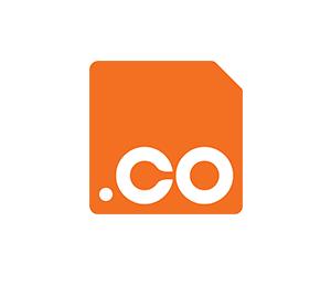 domain co
